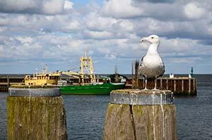 Hafen von Hörnum
